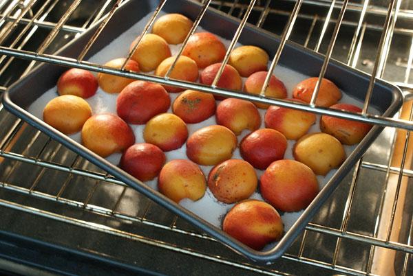 apricot-tart-roasting-apricots